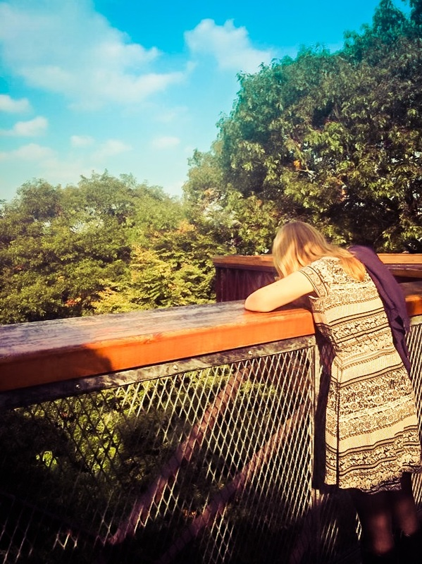 Picture of woman looking down a bridge surrounded by trees on a sunny day with blue skies