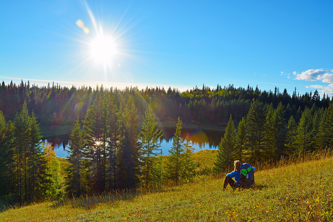 Hiking woman sits to admire sunny forest view in Canada