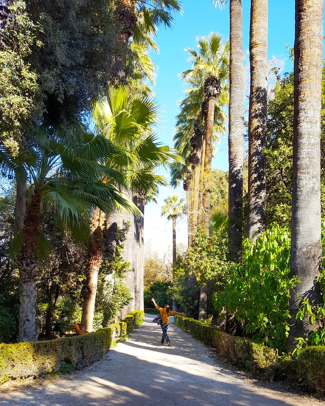 Picture of a woman walking through a park surrounded by palm trees