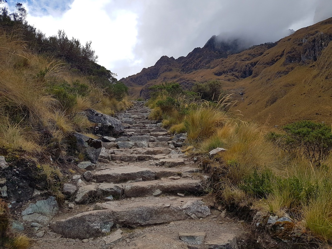 A steep slope along the Inca Trail